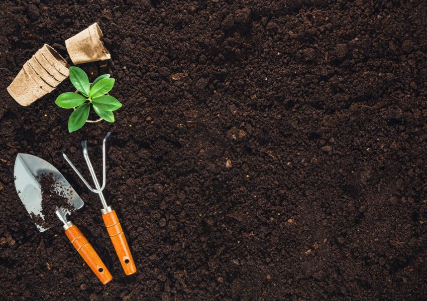 6 Ways to Prepare Your Soil for Spring Planting
